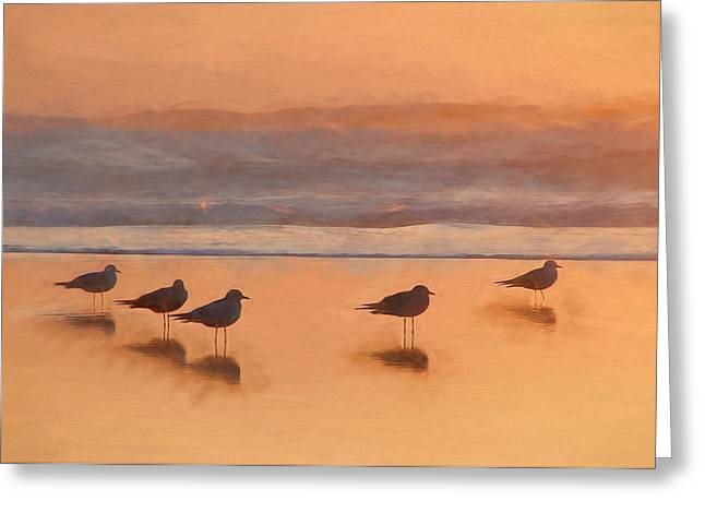 Sonoma County Mixed Media Greeting Cards - Plovers Reflecting Greeting Card by John K Woodruff