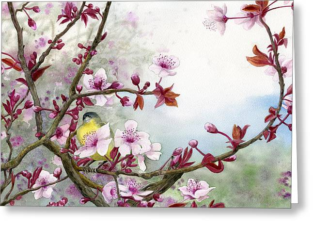 Plum Greeting Cards - Plum Blossoms Greeting Card by Karen Wright