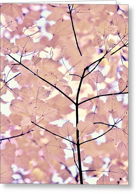 Plum Cream Leaves Melody Greeting Card by Jennie Marie Schell