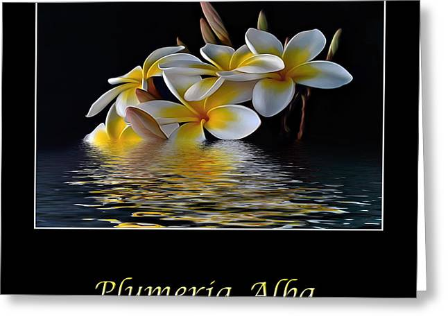 Reflection On Pond Greeting Cards - Plumeria Alba Greeting Card by Kaye Menner