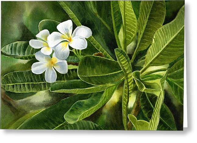 Watercolour Paintings Greeting Cards - Plumeria Leaves Greeting Card by Sharon Freeman