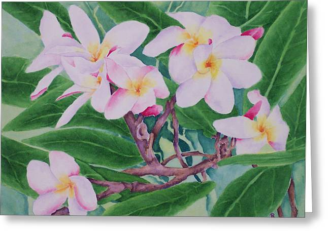 Sweetly Greeting Cards - Plumeria Greeting Card by Rhonda Leonard