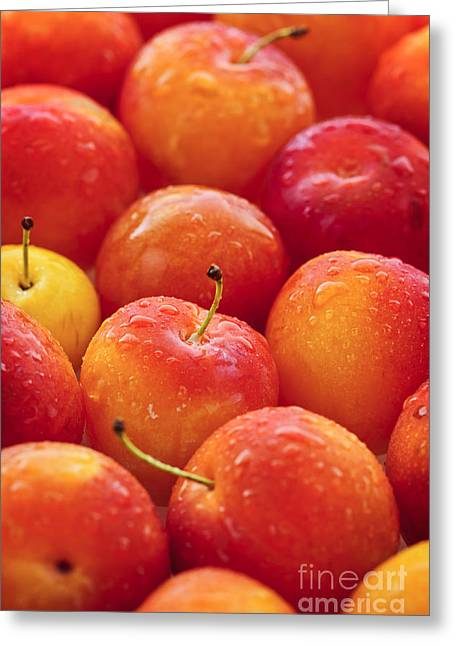 Produce Greeting Cards - Plums  Greeting Card by Elena Elisseeva