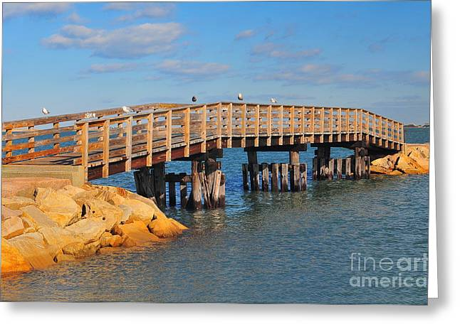 Catherine Reusch Daley Fine Artist Greeting Cards - Plymouth Harbor Breakwater Greeting Card by Catherine Reusch  Daley