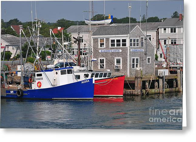 Plymouth Harbor Greeting Cards - Plymouth Harbor Greeting Card by Catherine Reusch  Daley