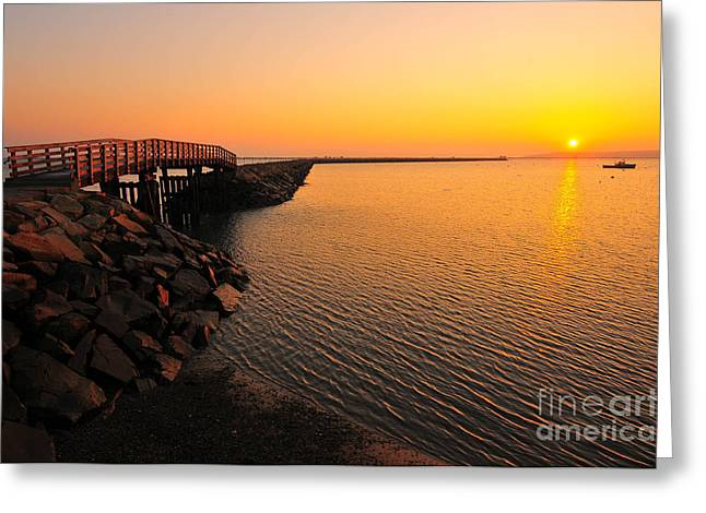 Plymouth Massachusetts Greeting Cards - Plymouth Harbor Jetty Greeting Card by Catherine Reusch  Daley