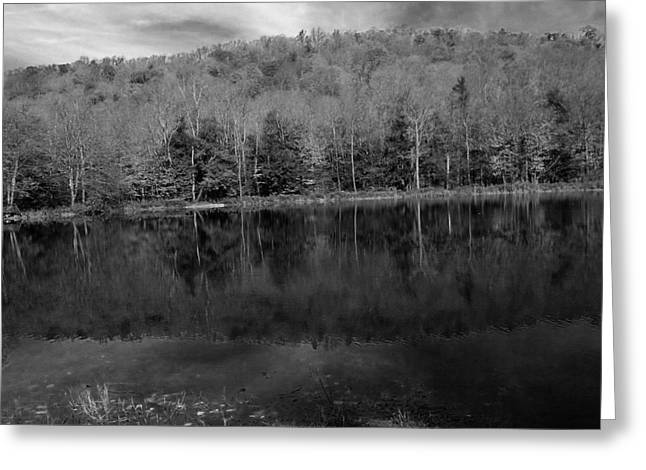 Reflection In Water Mixed Media Greeting Cards - Pocono Forest Greeting Card by Christine Degyansky