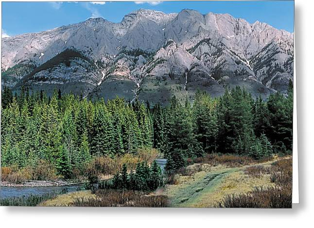 Canadian Foothills Landscape Greeting Cards - Pocaterra Greeting Card by Terry Reynoldson