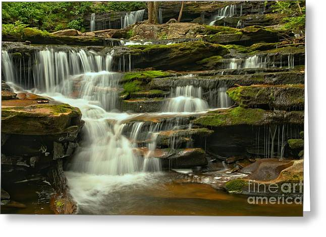 Moss Green Greeting Cards - Poconos Mossy Cascades Greeting Card by Adam Jewell