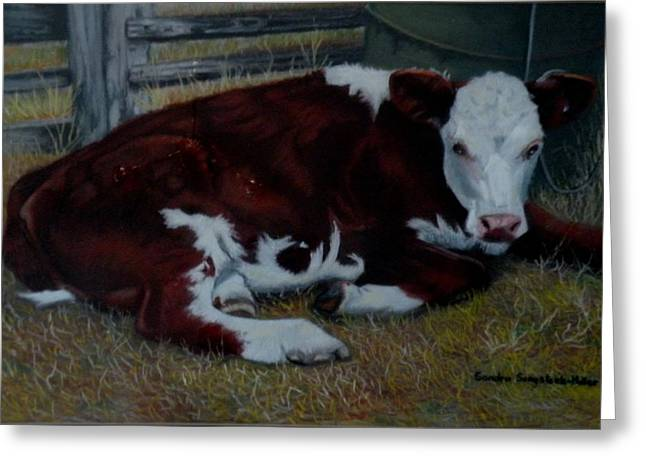 Cattle Prints Pastels Greeting Cards - Poddy Calf Greeting Card by Sandra Sengstock-Miller