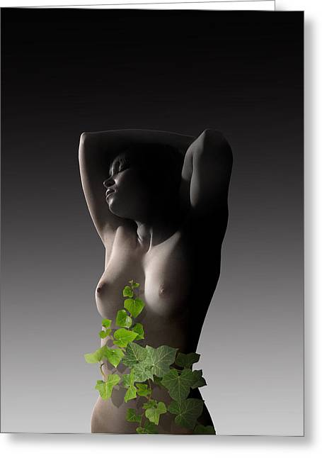Woman Torso Photograph Greeting Cards - Poesie Greeting Card by Matjaz Preseren
