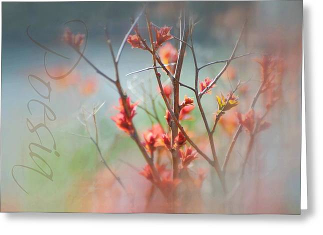 Cycle Of Life Greeting Cards - Poetry Greeting Card by Diana Angstadt
