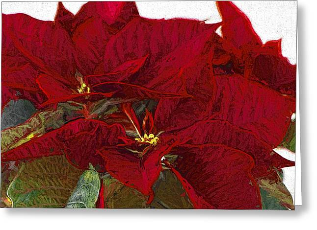 Star Of Bethlehem Greeting Cards - Poinsettia 3 Digital Painting on Canvas 2A Greeting Card by Sharon  Talson