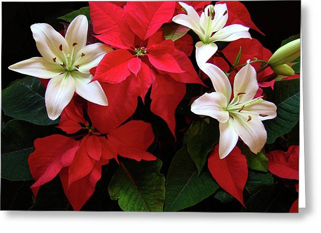 Christmas Art Greeting Cards - Poinsettia and Lilies Greeting Card by Sandy Keeton