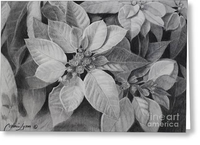 Hannukah Greeting Cards - Poinsettia Greeting Card by Connie Reilly