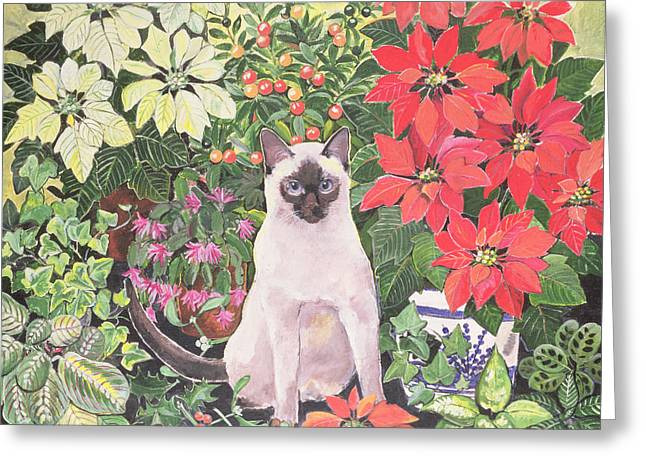 Siamese Cat Greeting Cards - Poinsettias Greeting Card by Hilary Jones