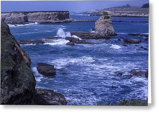 Ocean Shore Greeting Cards - Point Arena Coastline  Greeting Card by Garry Gay