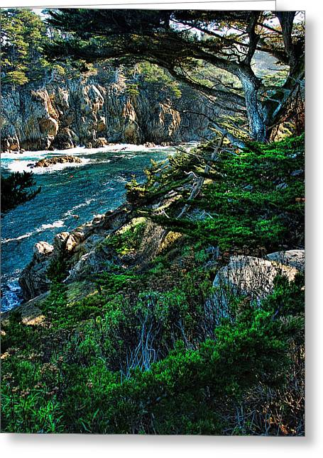 Point Lobos Greeting Cards - Point Lobo Greeting Card by Tom  Reed