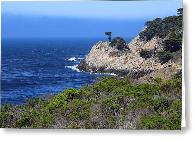 Point Lobos State Greeting Cards - Point Lobos 20130312 Greeting Card by Rob Bielawski
