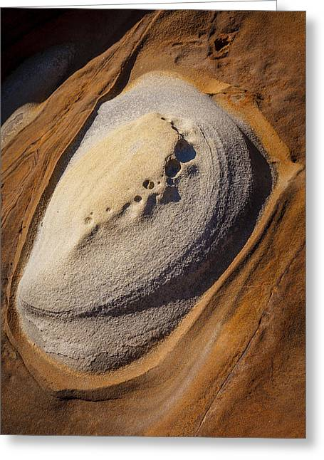 Point Lobos Greeting Cards - Point Lobos Abstract 2 Greeting Card by Mike Penney