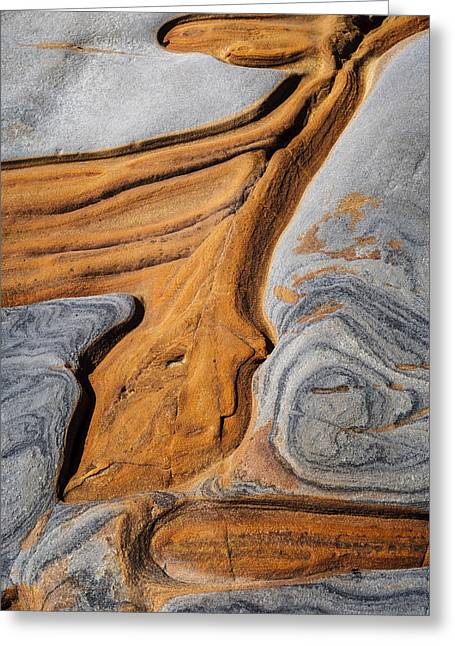 Point Lobos Abstract 5 Greeting Card by Mike Penney
