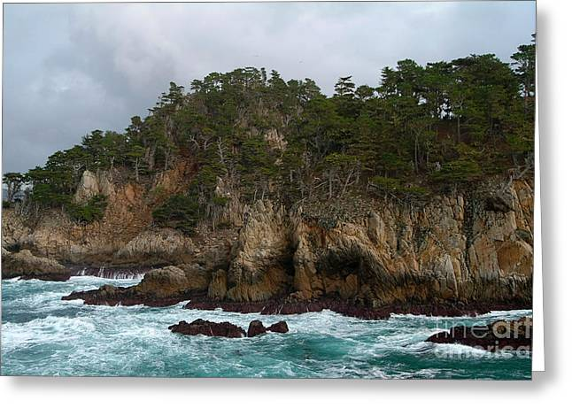 Point Lobos State Greeting Cards - Point Lobos Coastal View Greeting Card by Charlene Mitchell