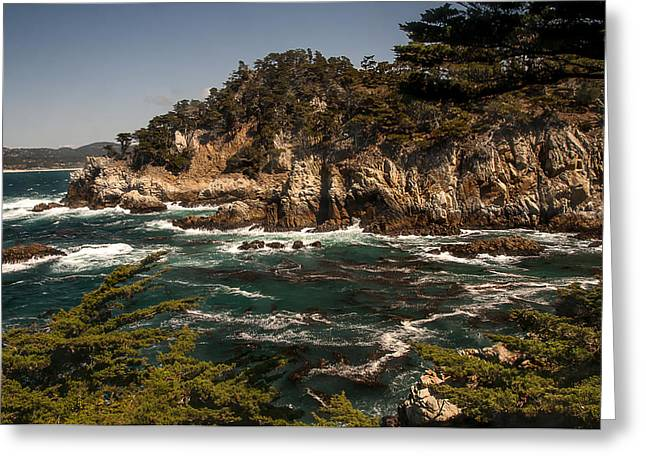 Point Lobos State Greeting Cards - Point Lobos Greeting Card by Lee Kirchhevel
