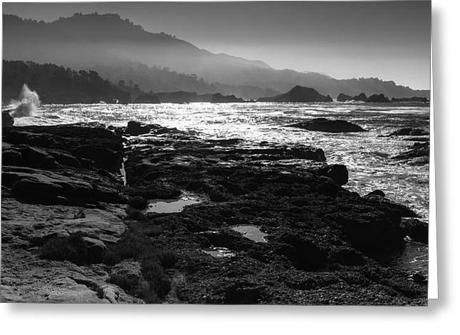 Point Lobos Greeting Cards - Point Lobos Greeting Card by Mike Herdering