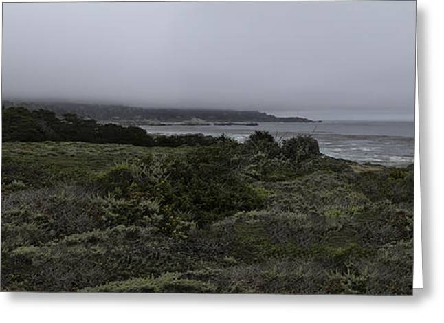 Point Lobos Greeting Cards - Point Lobos National Park Greeting Card by Angela A Stanton