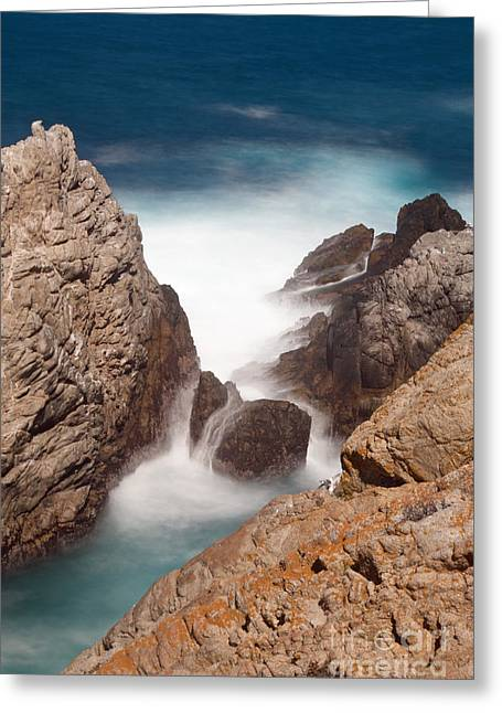 Lamdscape Greeting Cards - Point Lobos Number Two Greeting Card by Catherine Lau
