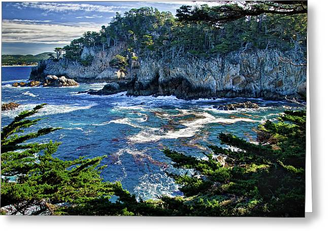 Point Lobos Photographs Greeting Cards - Point Lobos Greeting Card by Ron White