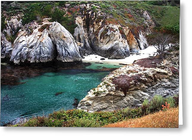 Point Lobos Photographs Greeting Cards - Point Lobos Shoreline Greeting Card by Art Block Collections