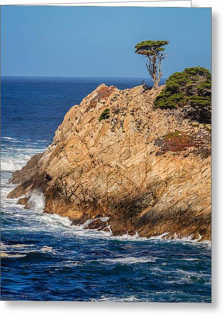 Point Lobos Greeting Cards - Point Lobos South Point Greeting Card by Mike Penney