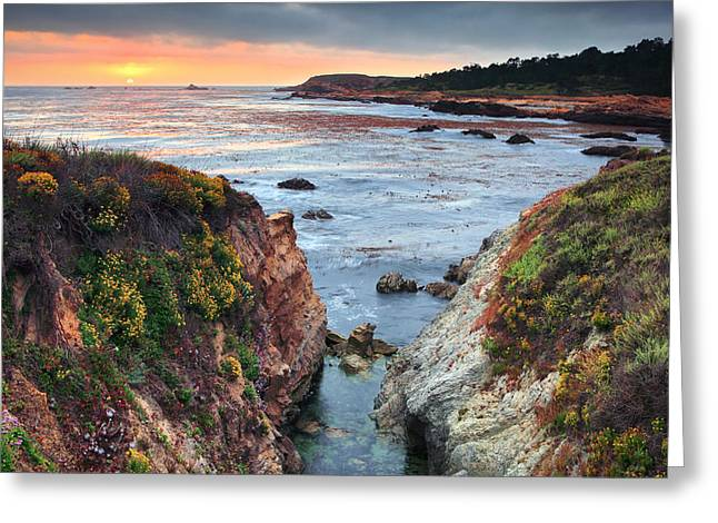 Best Sellers -  - Point Lobos Reserve Greeting Cards - Point Lobos State Reserve 3 Greeting Card by Emmanuel Panagiotakis
