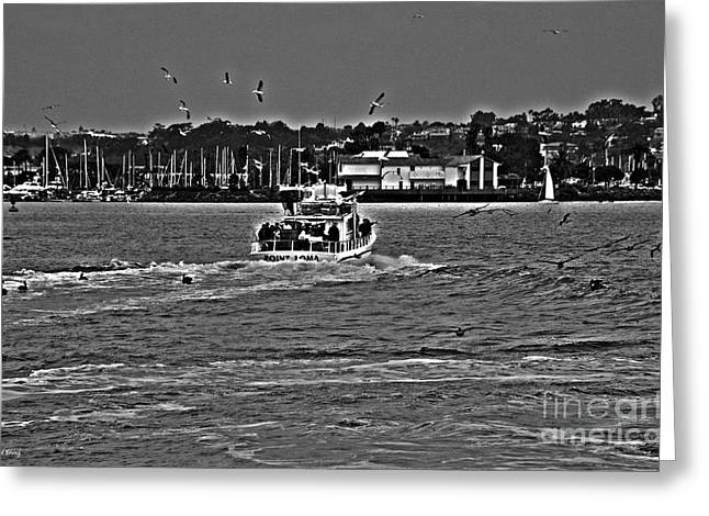 Point Loma Fishermen Greeting Card by Cheryl Young