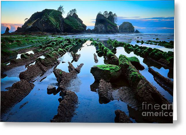 Wet Greeting Cards - Point of the Arches Greeting Card by Inge Johnsson