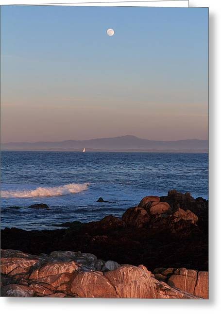 Santa Cruz Sailboat Greeting Cards - Point Pinos at Dusk Greeting Card by Scott Rackers