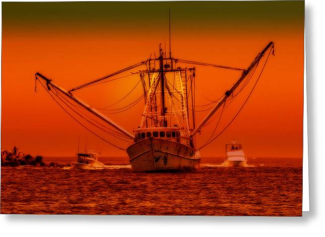 Decorative Fish Greeting Cards - Point Pleasant New Jersey Greeting Card by Geraldine Scull