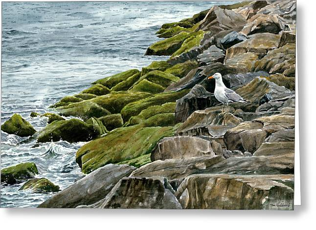 Moss Greeting Cards - Point Pleasant Greeting Card by Tom Hedderich