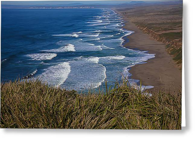 Points Greeting Cards - Point Reyes Beach Seashore Greeting Card by Garry Gay