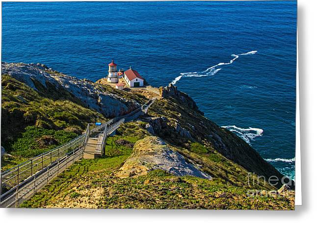 Points Pyrography Greeting Cards - Point Reyes Lighthouse Greeting Card by Paul Gillham