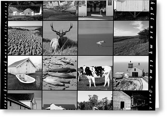 The Nature Center Greeting Cards - Point Reyes National Seashore 20150102 with text bw Greeting Card by Wingsdomain Art and Photography