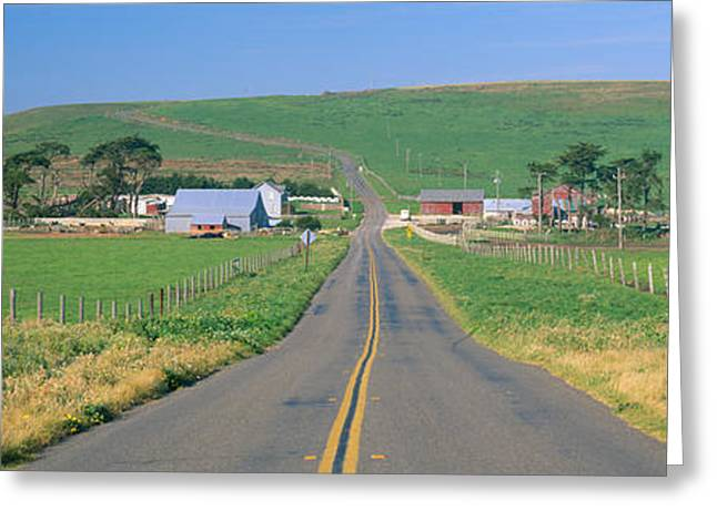 Marin County Greeting Cards - Point Reyes National Seashore Greeting Card by Panoramic Images