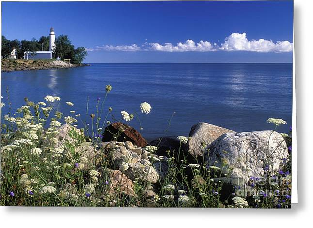 North American Inland Sea Greeting Cards - Pointe aux Barques and Summer Wildflowers - FS000823 Greeting Card by Daniel Dempster
