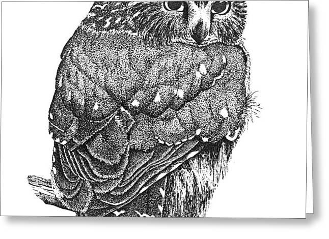 Pointillism Sawhet Owl Greeting Card by Renee Forth-Fukumoto