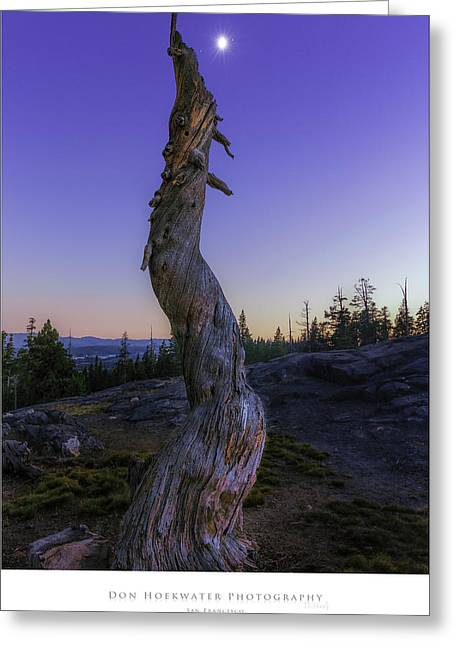 Ebbetts Pass Greeting Cards - Pointing at the Moon Greeting Card by PhotoWorks By Don Hoekwater