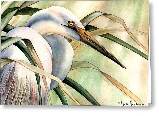 Egret Greeting Cards - Poise Greeting Card by Lyse Anthony