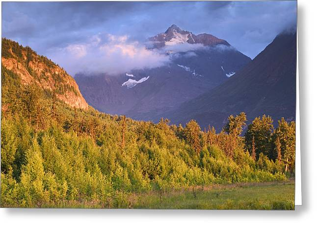Chugach Greeting Cards - Polar Bear Peak & Eagle River Valley In Greeting Card by Michael DeYoung