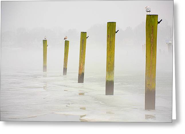Still Standing Greeting Cards - Poles Greeting Card by Karol  Livote
