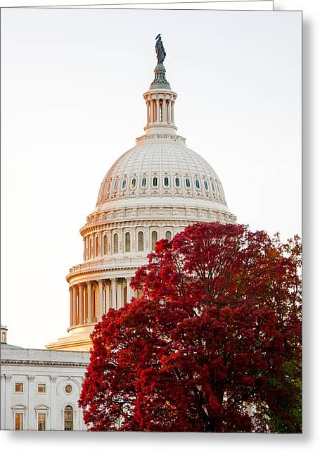 Arlington Greeting Cards - Politics Seeing Red Greeting Card by Greg Fortier